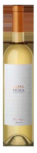 ALMA-MORA-PINOTGRIGIO-crop