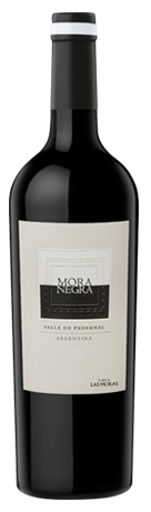MORA-NEGRA -crop